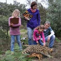 Tenikwa offers wildlife tours for day visitors, accommodation and overnight experiences. We are situated in Plettenberg Bay, on The Garden Route. Family Adventure, South Africa, Wildlife, Challenges, African, Tours, Couple Photos, Travel, Image