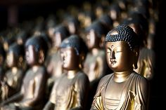 Dozens of Buddhas inside the mountain Buddhist temple of Seokbulsa in Busan, Korea,