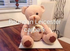 Founded In, Leicester, Car Parking, Pet Toys, Type 3, Teddy Bear, Facebook, Photos, Animals