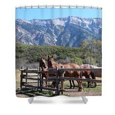 Rocky Mountains Horses Country Living
