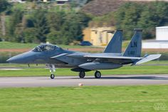 F-15D 493rd Fighter Squadron Grim Reapers RAF Lakenheath USAFE