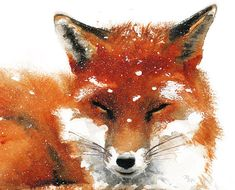 Winter Red Fox  Archival print of watercolor by MiraGuerquin