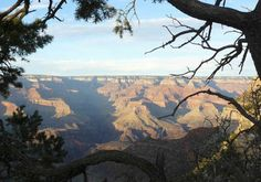 HAPPY ANNIVERSARY   GRAND CANYON!   One hundred and five years ago today, January 11th, 1908, President Theodore Roosevelt designated the Grand Canyon a National Monument. It wasn't until 1919, that it officially became a National Park.