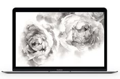 Dress Your Tech: Elegant Floral by Jess Blazejewski Dress Your Tech, Neutral Colour Palette, Free Prints, Printable Invitations, Mobile Wallpaper, Peonies, Backdrops, Watercolor, Fine Art