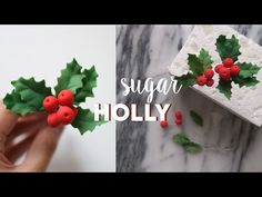 How to Make Gumpaste Holly | Marian Studio - YouTube