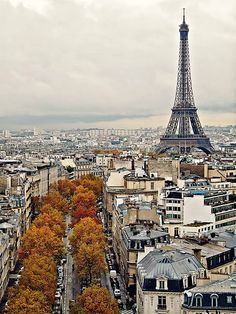 HOST FAMILIES NEEDED for high school exchange students from France.  Contact OCEAN for more information.  Toll-Free: 1-888-996-2326; E-mail: info@ocean-intl.org; Web: www.ocean-intl.org