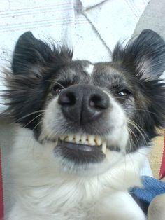 Mama meinte ich sollte mal die Zähnchen zeigen....