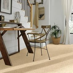 Plush, luxurious Stainmaster carpet for your home Shaw Carpet, Diy Carpet, Modern Carpet, White Carpet, Wall Carpet, Neutral Carpet, Carpet Decor, Blue Carpet, Carpet Trends