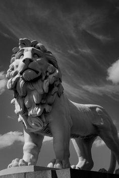 #lion #sculpture