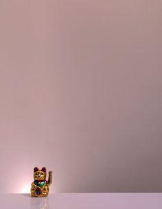 """Gatochino @Guggenheim Bilbao XHBTN  """"light #1"""""""