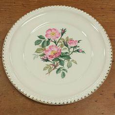 1 Dinner Plate Wild Pink Rose 22K Gold Royal Gadroon Rim