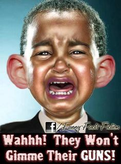 OBAMA: WAHHH! THEY WON'T GIMME THEIR GUNS!!!!!!!