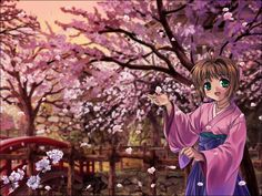 card captor sakura Part 13 - - Anime Image Sakura Cherry Blossom, Cherry Blossom Flowers, Syaoran, Cardcaptor Sakura, Anime Chibi, Manga Anime, Clow Reed, Card Captor, Clear Card