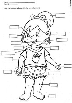 Print Body Parts Coloring Pages For Kids   Laptopezine