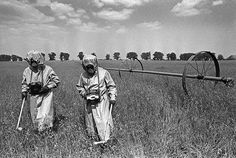 """May 1986: In the 30km no-go zone around the reactor, liquidators measure radiation levels in neighbouring fields using antiquated radiation counters, wearing anti-chemical warfare suits that offer no protection against radioactivity, and """"pig muzzle"""" masks. The young plants will not be harvested, instead used by scientists to study genetic mutations in plants"""