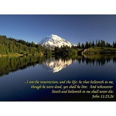 bible quotes about life - Google Search