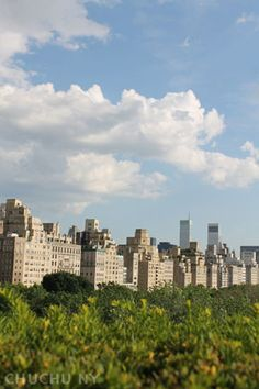 View from rooftop of The Metropolitan museum