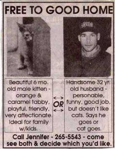 I think I'd take the cat!! lol