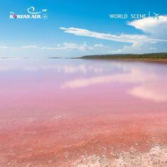 [World Scene] Pink Lake, a salt lake in the Western Australia. #koreanair