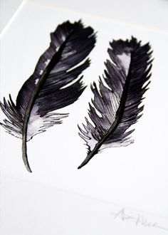 Feather Print by Alisa Burke