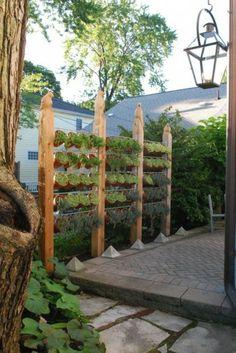 Sichtschutz im Garten beleuchten pflanzen landschaft