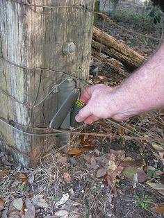 Neat geocache hide.. by rhondapalooza, via Flickr