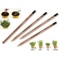 The Sprout pencil: the only one that becomes a plant.  Don't throw it away but plant it and in a few day you'll see a small plant.  You can find it there: http://www.sadesign.it/it/gadget/matita-sprout_23835_idp/