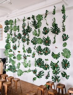 tropical frond backdrop