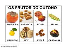 frutos outono - Pesquisa Google