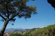 Bordighera (IM) - uno scorcio panoramico