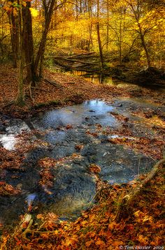 Piney Run, Purcellville, Virginia; photo by Tom Lussier