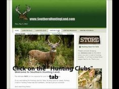 Florida Hunting Clubs - Southern Hunting Land has over 25 Fl.                                               Hunt Clubs listed on-line.