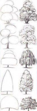 New Ideas Tree Drawing Tutorial Backgrounds Kunst Inspo, Art Inspo, Tree Sketches, Drawing Sketches, Drawing Art, Drawing Skills, Sketching, Art And Illustration, Manga Illustrations