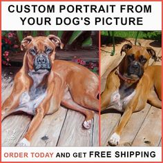 Custom Dog Portrait on Canvas from your Buddy's picture. Here we came with a new Product for you. Give us a picture of your buddy and we will make a Portrait on Canvas with Oil Colors. We launched this product for First time on Instagram. So we are giving FREE SHIPPING to our Instagram followers. Book a portrait of your Buddy Now! Visit my Bio for Link   @bestlabradors