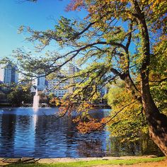 While you experience is a nice stop to take pictures or to relax, watching the ducks. Photo by: michellemillas Tourist Sites, Visit Norway, Stavanger, Ducks, Relax, River, Autumn, Places, Pictures