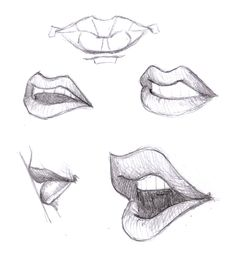 Sketching Mouth