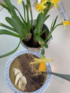 Brunch, Plants, Flora, Plant, Brunch Party