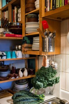 A canister and some hanging hooks on the side of cabinets that hang around a sink or window is really great idea.