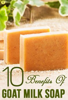 Top 10 Benefits Of Goat Milk Soap When it comes to all natural soaps with amazing benefits, goat milk soap tops the list. Here are top 10 benefits of using these soaps as they does much more than just cleansing our body Goat Milk Recipes, Soap Making Supplies, Homemade Soap Recipes, Bath Soap, Goat Milk Soap, Handmade Soaps, Diy Soaps, Home Made Soap, Goats