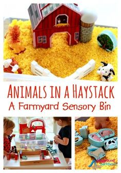 Entertain your toddler and preschooler for hours with this Find and Seek Farm Animals in a Haystack Sensory Bin. Part of our weekly Kid Bloggers of Instagram Activity Round-Up!