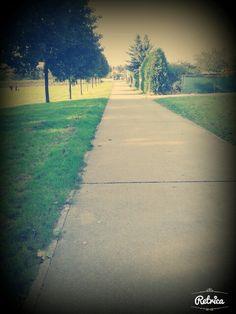 #trees#grass
