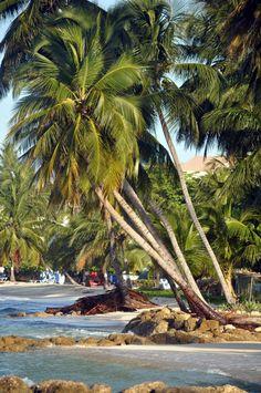 Beautiful Beautiful Barbados...