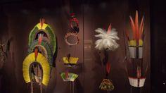 Exposition sur l'Amazonie en 2016 - spot 1