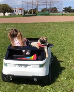 Animals And Pets, Funny Animals, Cute Animals, Dollar Tree Crafts, Pug Puppies, Cute Pugs, When I Grow Up, Having A Bad Day, Pug Love