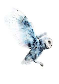 Image result for painting a watercolour owl