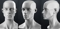 planes_of_the_head_-_female_3d_model_obj_b4bf82c1-e33b-4658-8447-4b8aca81d217.jpg 1.400×672 pixels