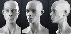 http://img-new.cgtrader.com/items/25564/planes_of_the_head_-_female_3d_model_obj_b4bf82c1-e33b-4658-8447-4b8aca81d217.jpg