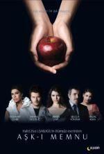 Tiltott szerelem (2008)