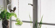 6 idées simples pour décorer son rebord de fenêtre - 100 Idées Déco