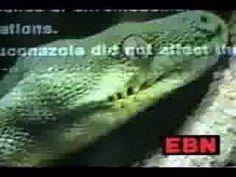EBN - Psychoactive drugs